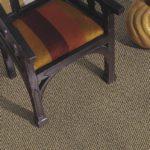Mohawk Aladdin Carpet Terrestrial View