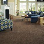 Tuftex Carpet Arietta