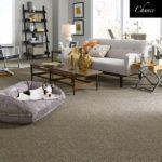 Tuftex Carpet Chance
