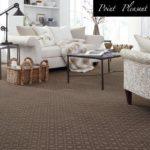 Tuftex Carpet Point-Pleasant