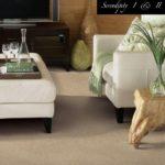 Tuftex Carpet Serendipity-I-II