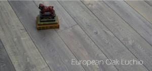 European-Oak-Luchio