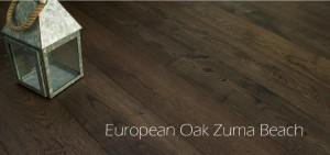 European-Oak-Zuma-Beach