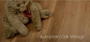 European-Oak-Vestige
